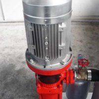 Pompe alta Pressione 004