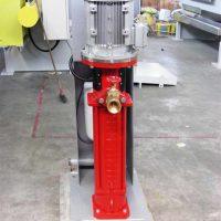 Pompe alta Pressione 005